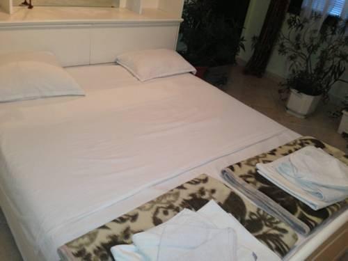 Family Hotel Detelina - фото 3