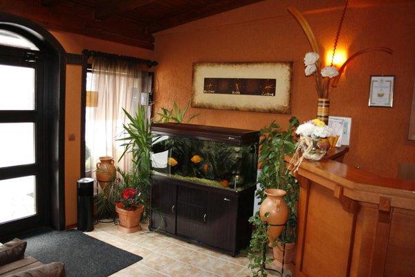 Elida Family Hotel - фото 12