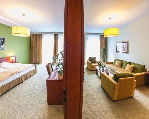 Hotel Vis a Vis Lancut - фото 1