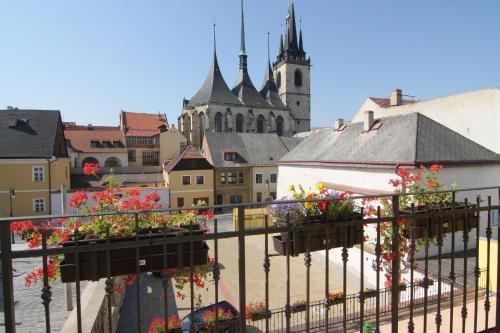 Hotel U Radnice - фото 23