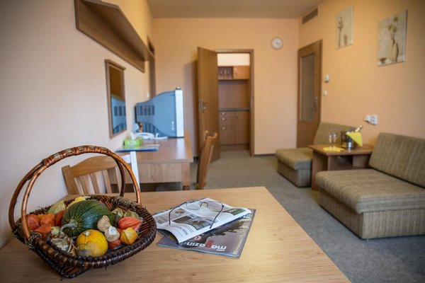 Hotel Na Jizni - фото 5