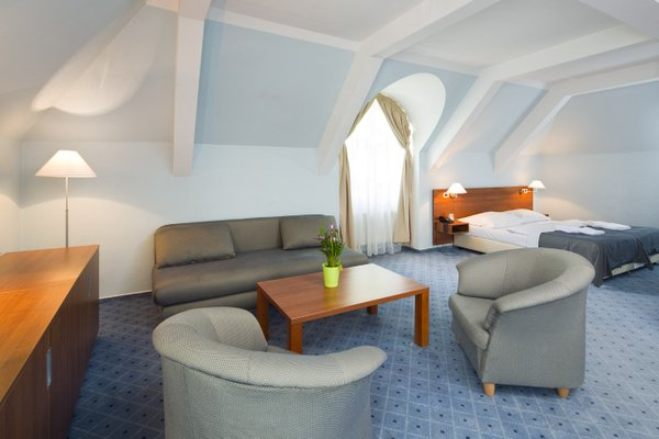 Hotel Na Zamecku - фото 4