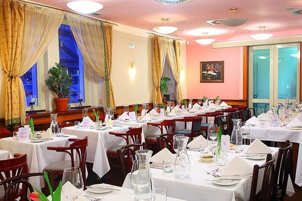 Hotel U Divadla - фото 10