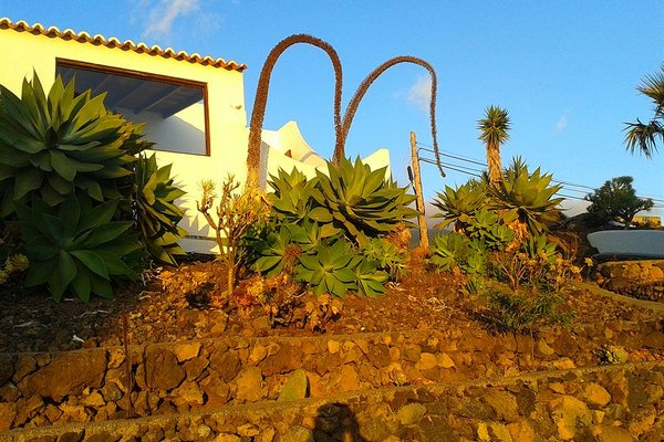 Bungalows Canary Islands - фото 19