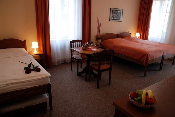 Hotel Karlin - фото 1