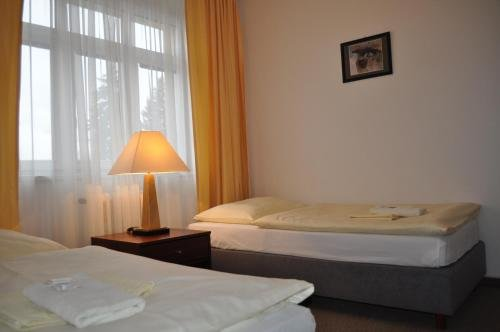 Hotel Svornost - фото 4