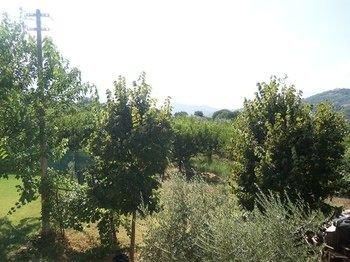 Agriturismo Il Melograno - фото 4