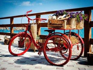 Фото отеля Аламыс