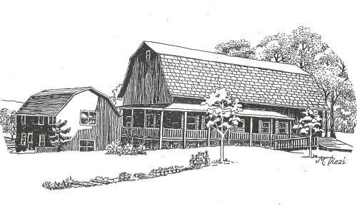 Photo of The South Glenora Tree Farm