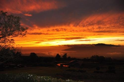 Photo of Kula 4200Kula, Hawaii