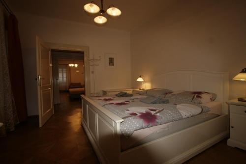Apartment Stare Mesto Anenska - фото 1