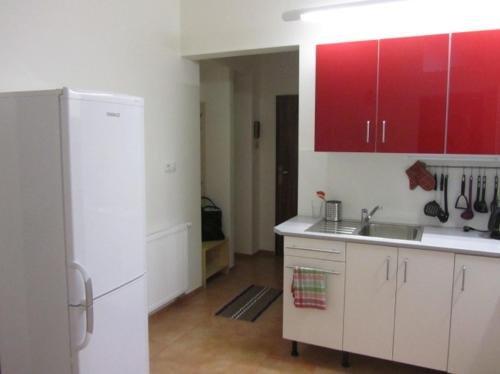 Apartment Vinohrady - фото 14