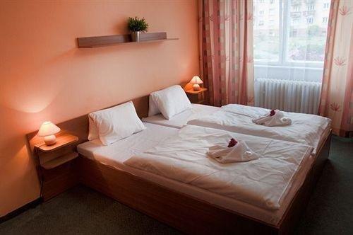 Hotel Krusnohor - фото 1