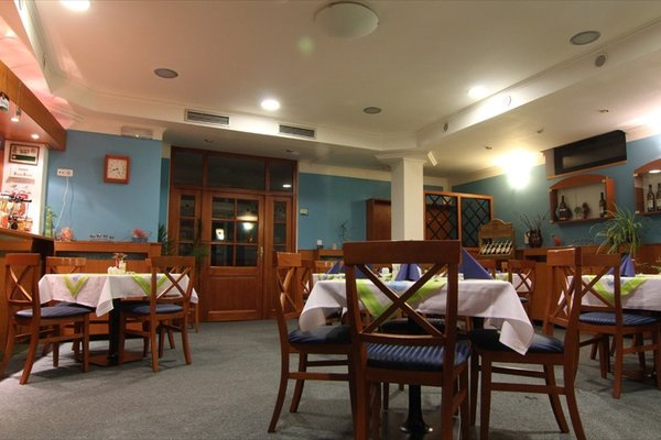 Hotel Anna Nejdek - фото 10