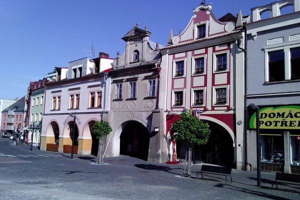 Hotel Zlaty Kohout - фото 18