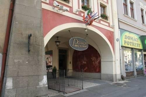 Hotel Zlaty Kohout - фото 22