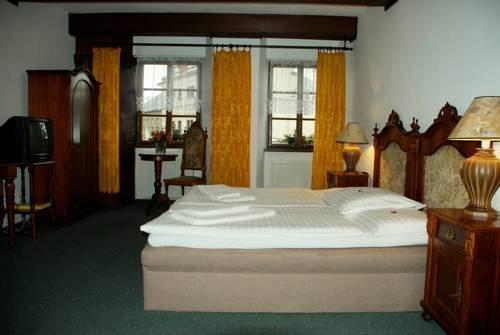 Hotel Zlaty Kohout - фото 5