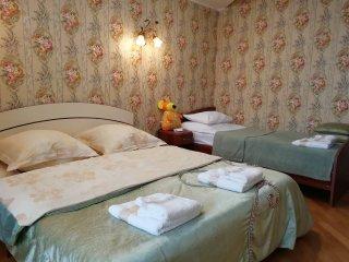 Фото отеля Большие Двухуровневые Апартаменты на Революционной 77