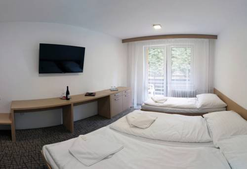 Hotel Kamzik - фото 5