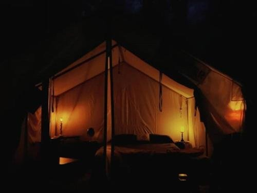 Photo of Tentrr - The Magic Glamp