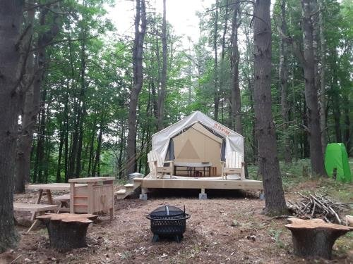 Photo of Tentrr Signature Site - Forest Farm Waterfall Camp Site