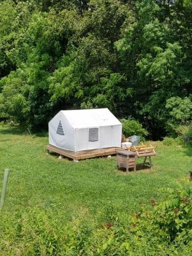 Photo of Tentrr - Creekside Woods Getaway