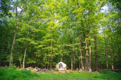 Photo of Tentrr - Kamp Kimberg North