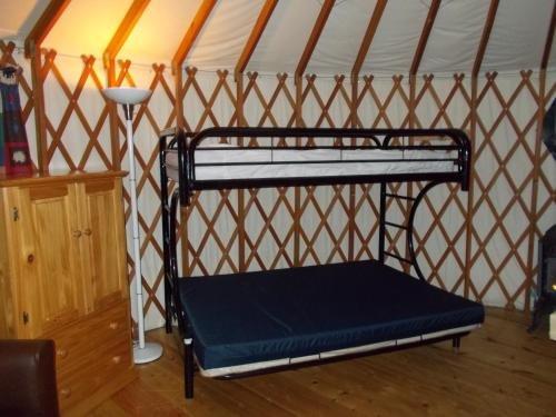 Photo of Mount Vernon Camping Resort 20 ft. Yurt 3