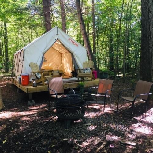 Photo of Tentrr Signature Site - Pine Spirit