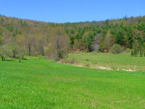 Photo of Tentrr - Hessian Hill Farm