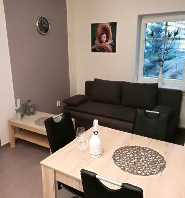 Pension Apartma SunGarden Liberec - фото 7