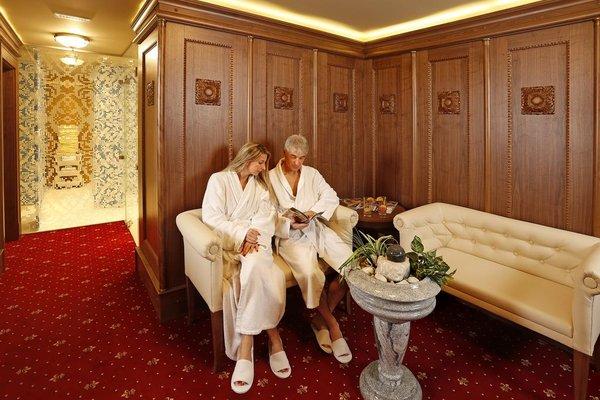 Lazensky Hotel Smetana - Vysehrad - фото 19