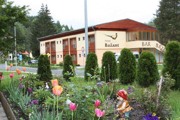 Hotel Bazant - фото 22