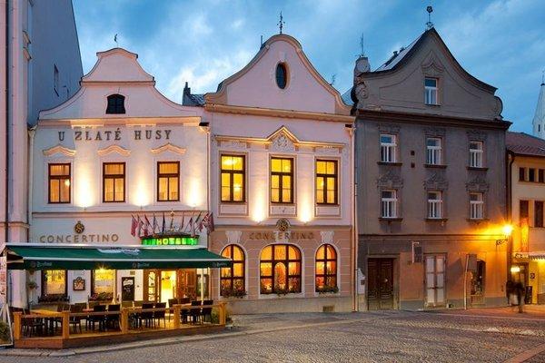Hotel Concertino Zlata Husa - фото 22