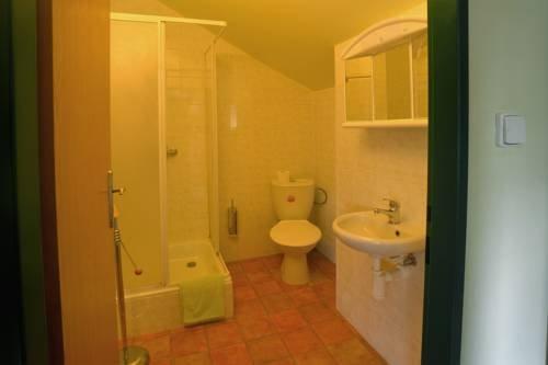 Hotel U Zeleneho Stromu - фото 7