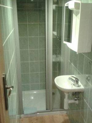 Hotel U Zeleneho Stromu - фото 9