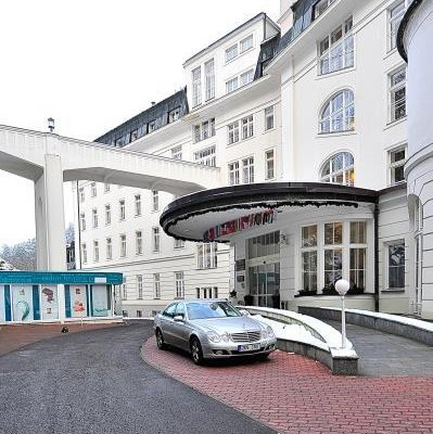 Radium Palace Spa Hotel - фото 22
