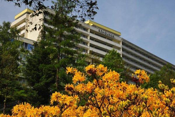 Behounek Spa Hotel - фото 22