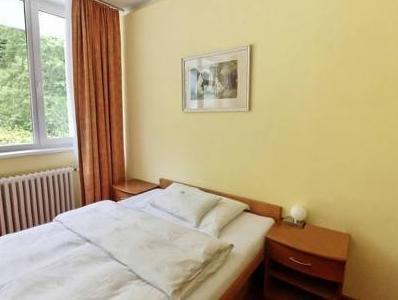 Behounek Spa Hotel - фото 3