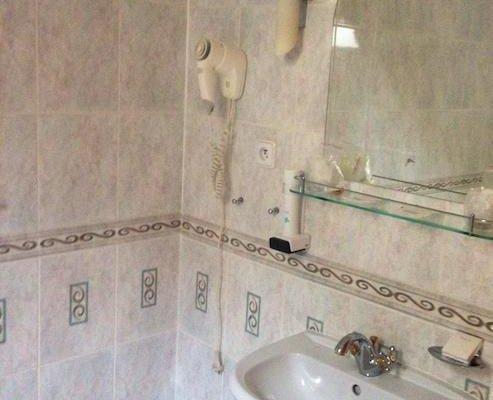 Hotel Zlaty Lev - фото 12