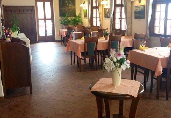 Hotel Zlaty Lev - фото 17