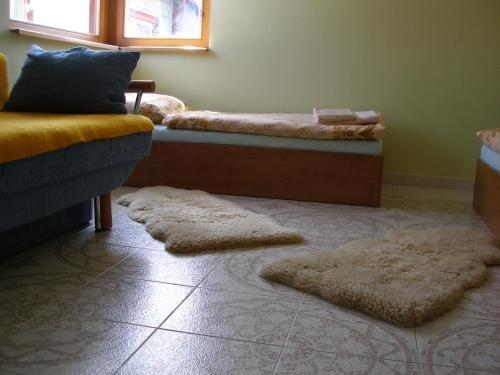 Apartmany Arnika - фото 1