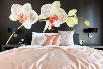 Tobago Hotel - фото 22