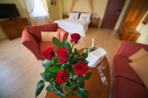 Hotel Podhrad - фото 14