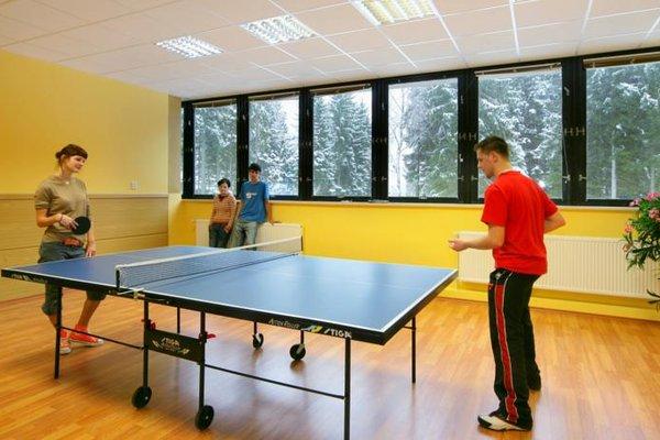 Wellness Hotel Svornost - фото 15