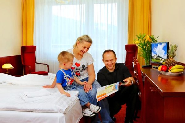 Wellness Hotel Svornost - фото 3
