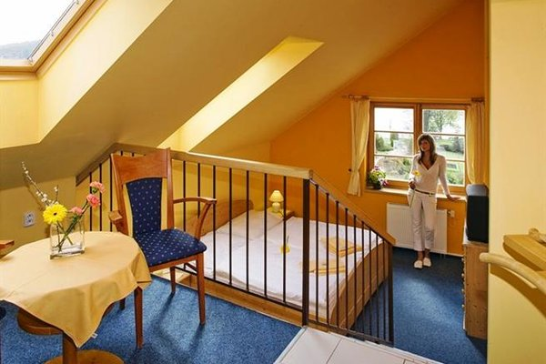 Hotel Vltava - фото 15