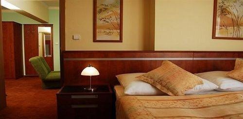 Hotel Bohemia Chrudim - фото 1