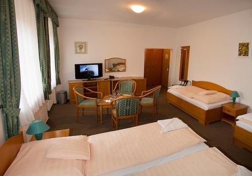 Hotel u Sladka - фото 8