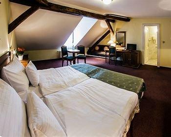 Hotel Dvorak Cesky Krumlov - фото 1
